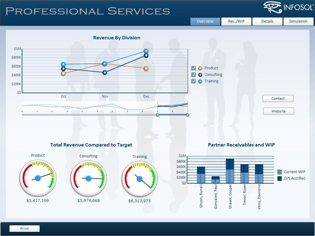 Professional Services Dashboard – InfoSol