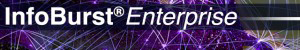 iB-Enterprise-300x50