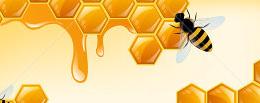 hadoop-hive