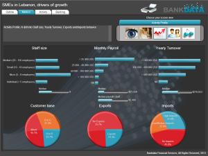 Bankdata-SME-Dashboard
