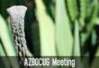 Arizona BusinessObjects User Group (AZBOCUG)
