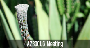 Arizona BusinessObjects User Group (AZBOCUG)